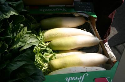 瑞々しい大根。基本の野菜も鮮度抜群!
