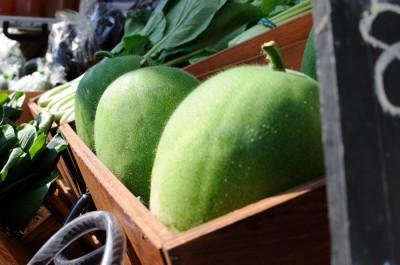 珍しい野菜『ヒメトウガン』。表面に小さなとげがあり、取り扱い注意ですが美味しいです!