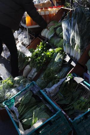 大根や水菜などなど。