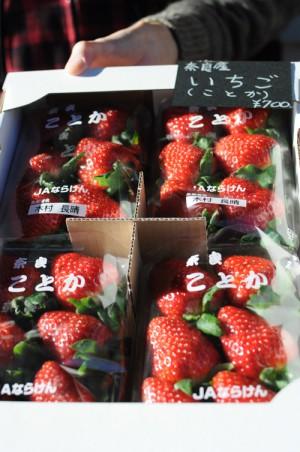 珍しい品種の苺「ことか」。