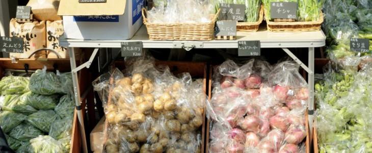 ロハスカフェさんの新鮮な野菜盛り沢山。