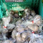 ロハスカフェさんの奈良県産の里芋(ウーハン)