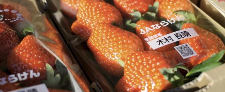 奈良県産のイチゴ、あすかルビー!