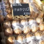 ロハスカフェさんの奈良県産のけはやたまご